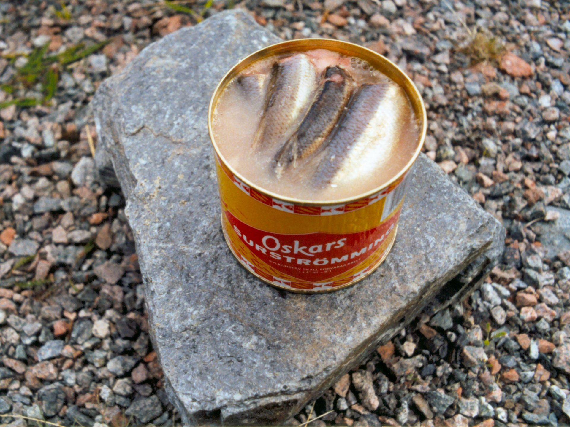 Kiszony śledź to prawdziwy typiskt svenskt